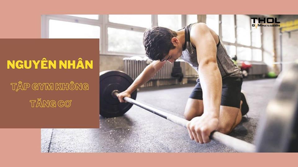 tập gym không tăng cơ