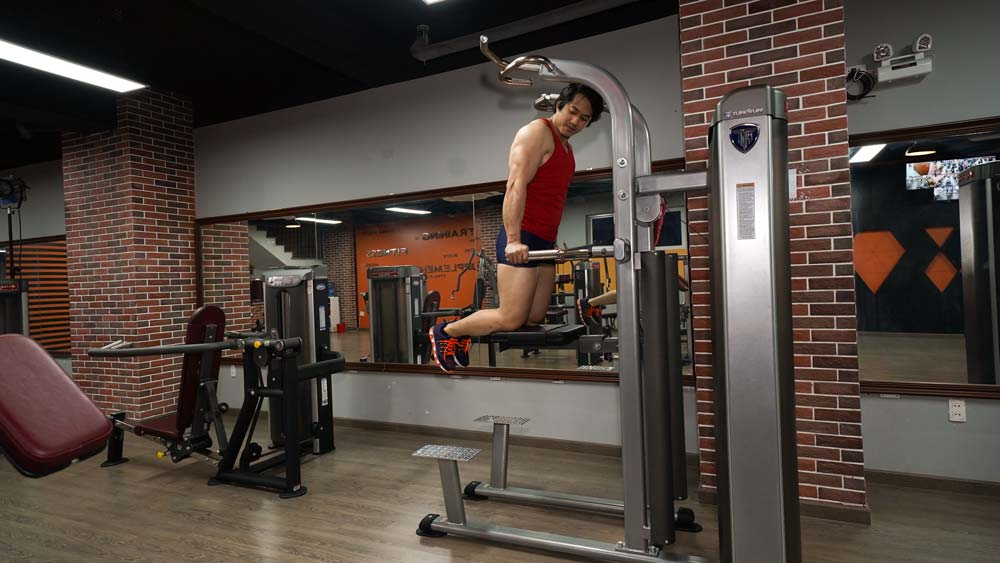 PPS-215 Pullup/Chin/Dip