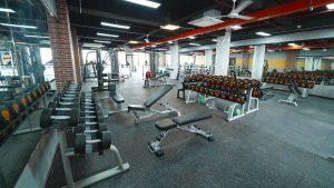 TuffStuff thiết kế sản xuất hàng loạt thiết bị Freeweight Benches & Racks
