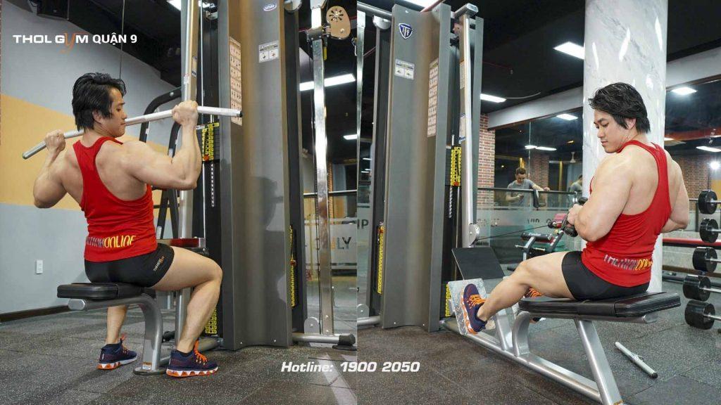 Jungle Gym Systems hệ sinh thái tập luyện toàn thân