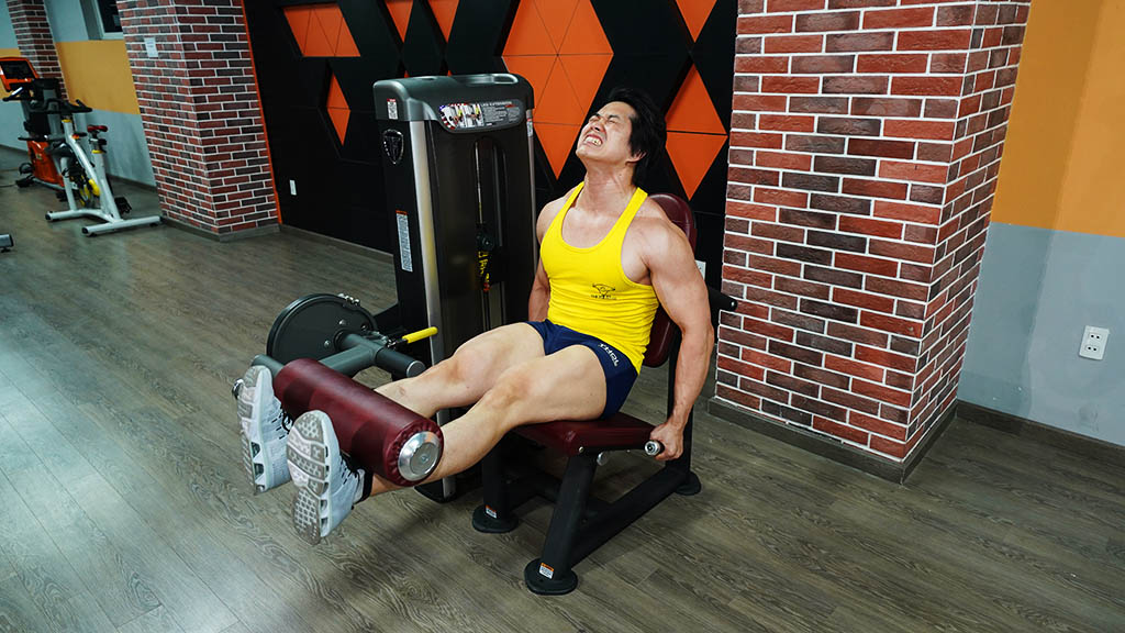 PPS-231 Leg Extension – Máy đá đùi
