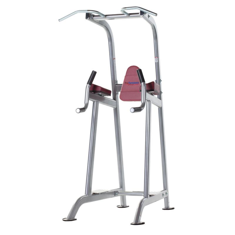 Chin / Dip / Leg Raise (PPF-720)
