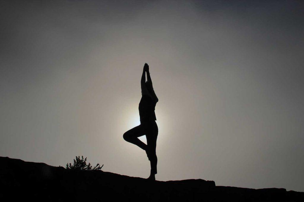 bộ môn Vinyasa yoga ở THOL Center