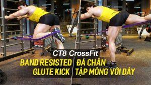 Band Resisted Glute Kick - Tập đá chân cho mông to tròn trên máy CT8