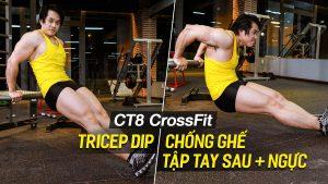 Triceps Dip - Hướng dẫn tập tay sau săn chắc, ngực cắt nét trên máy CT8