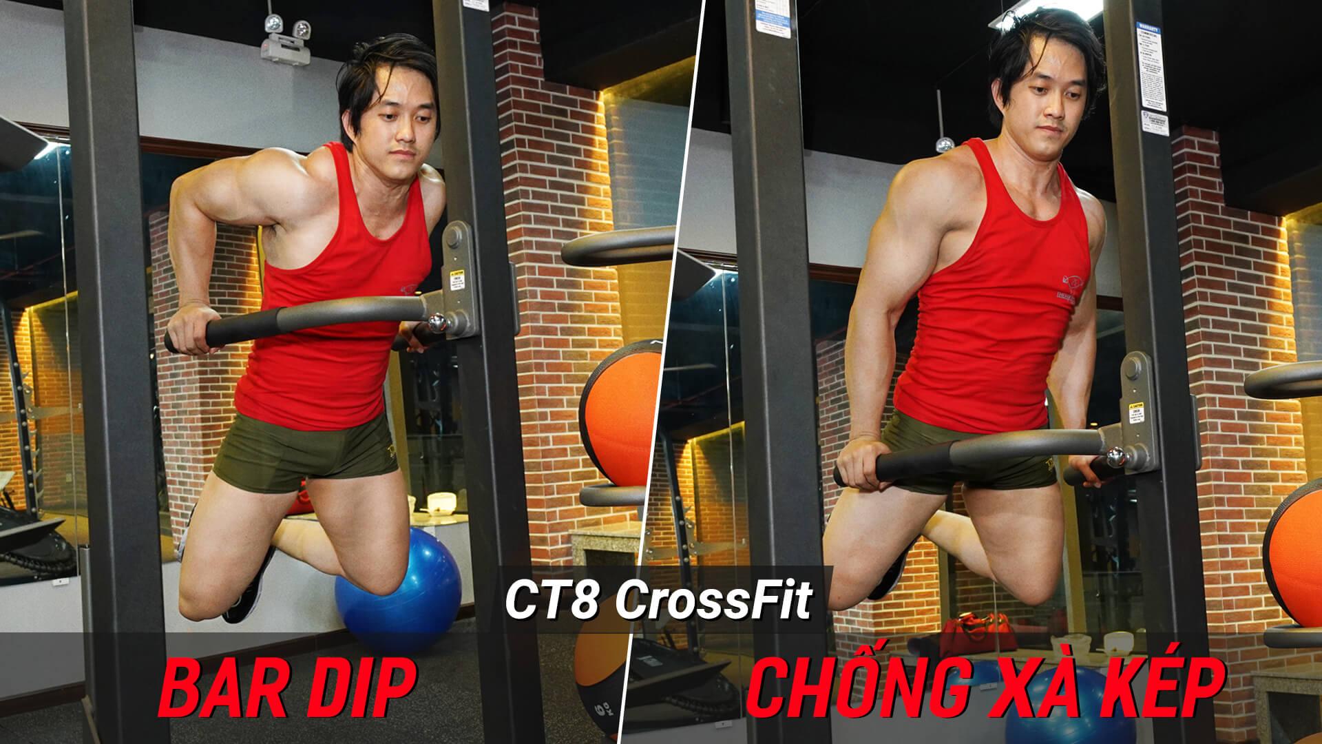Bar Dip - Hướng dẫn chống xà kép tập ngực tay sau trên máy Crossfit CT8